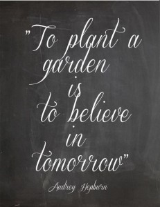 inspirational-quotes-to-plant-a-garden