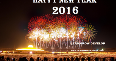 people-lights-firework-new-years