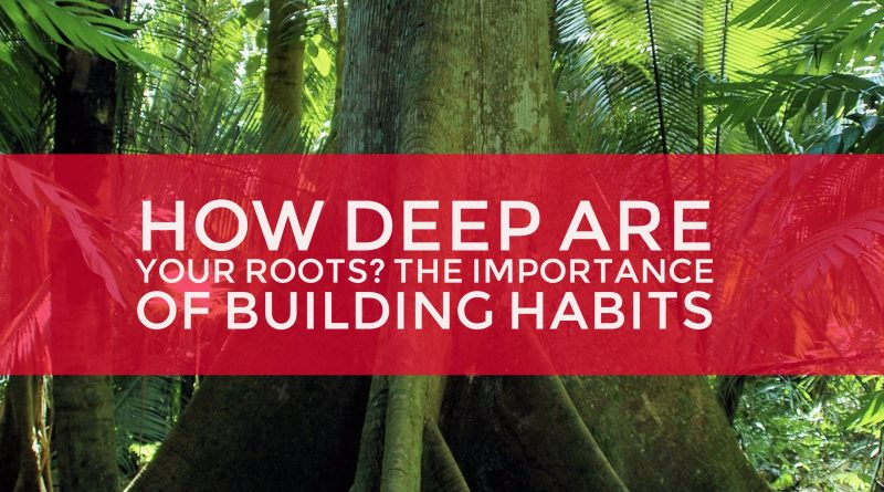 trees-building-habits